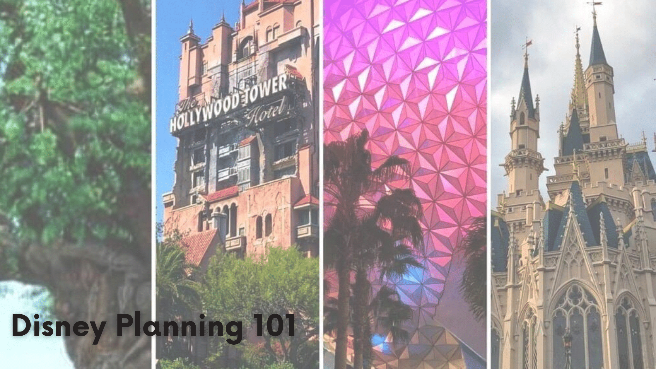 Walt Disney World Vacation Planning 101: How to Begin Planning for a Visit to the Mouse