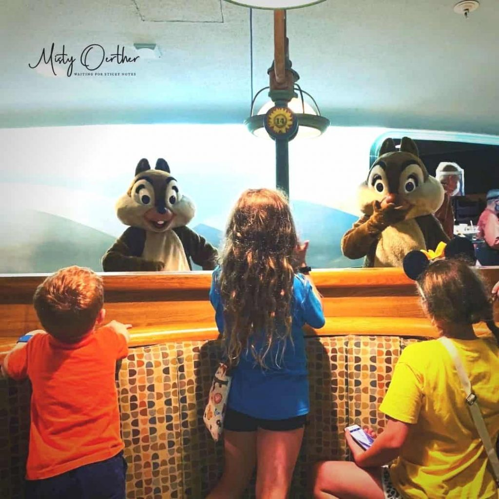 Character interaction. Kids viewing Chip and Dale at Garden grill